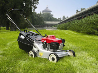 China 173cc Self Propelled Gasoline Lawn Mower , Grass Trimmer Gardening Machine supplier